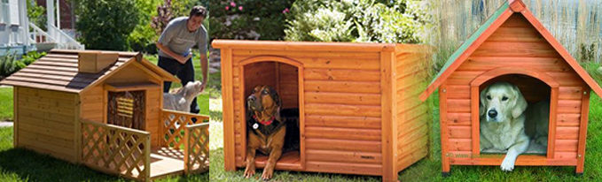 booths-for-dogs1